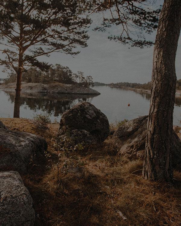 Page not found – JACK WOLFSKIN